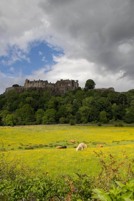 Edinburgh (51 von 86)